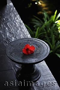 Asia Images Group - wooden dish with red hibiscus