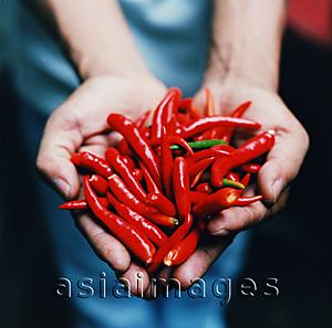 Asia Images Group - Red chillies for sale at market