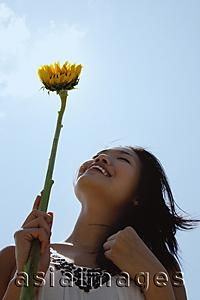 Asia Images Group - Woman holding sunflower stalk, looking up, low angle view