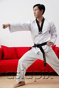 AsiaPix - Man at home practicing martial arts